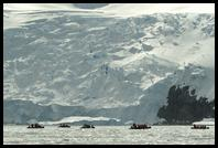 Zodiac cruising amongst the sea ice