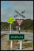 West Coast road sign warning bicyclists of the train tracks