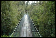 Swing bridge in the Hokitika Gorge