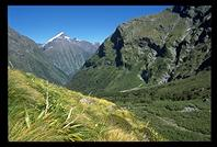 The Arthur River Valley along  the Milford Track